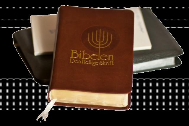 Bibelkurset